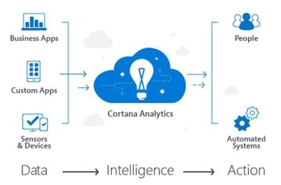 Rental Cortana Analytics